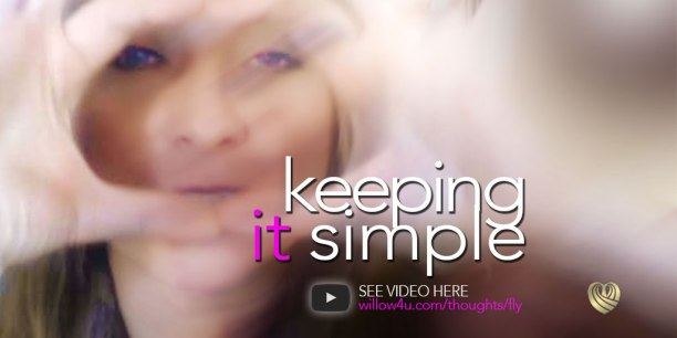 fly_free_keeping_it_simple_03